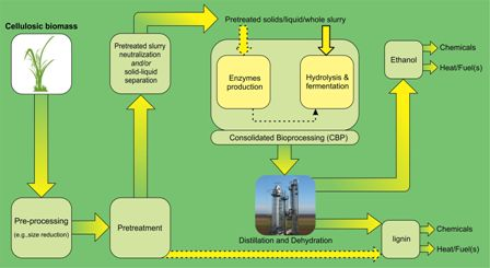 Recent updates on lignocellulosic biomass derived ethanol - A review
