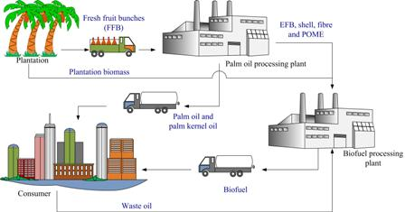 Advances in biofuel production from oil palm and palm oil processing wastes: A review