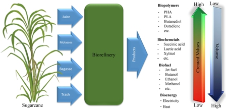 Recent trends on techno-economic assessment (TEA) of sugarcane biorefineries