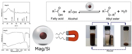 Magnetically recyclable nanocatalysts based on magnetite: an environmentally friendly and recyclable catalyst for esterification reactions
