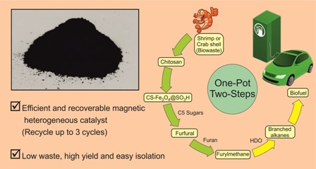 Novel synthesis of Lewis and Bronsted acid sites incorporated CS-Fe3O4@SO3H catalyst and its application in one-pot synthesis of tri(furyl)methane under aqueous media
