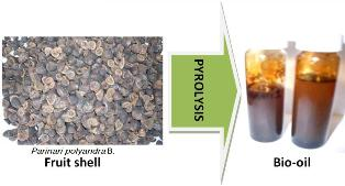 Pyrolysis of Parinari polyandra Benth fruit shell for bio-oil production