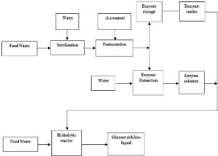 Glucoamylase production from food waste by solid state fermentation and its evaluation in the hydrolysis of domestic food waste