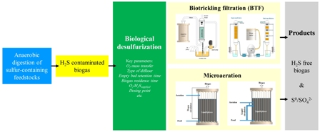 A review on prospects and challenges of biological H<sub>2</sub>S removal from biogas with focus on biotrickling filtration and microaerobic desulfurization