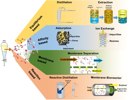 A comprehensive review on biodiesel purification and upgrading