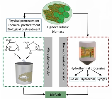 Pretreatment methods for lignocellulosic biofuels production: current advances, challenges and future prospects
