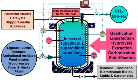 Applications of subcritical and supercritical water conditions for extraction, hydrolysis, gasification, and carbonization of biomass: a critical review