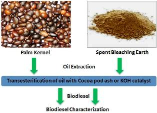Production and characterization of biodiesel using palm kernel oil; fresh and recovered from spent bleaching earth