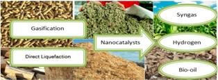 A review on conversion of biomass to biofuel by nanocatalysts