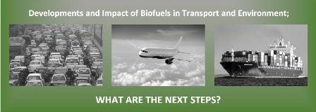 A closer look at the developments and impact of biofuels in transport and environment; what are the next steps?