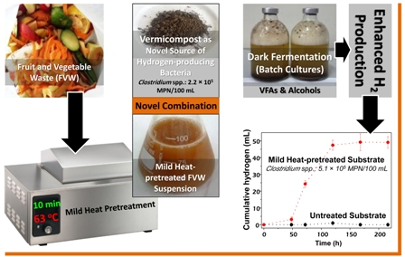 Fermentative biohydrogen production from a novel combination of vermicompost as inoculum and mild heat-pretreated fruit and vegetable waste