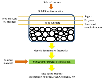 Modern microbial solid state fermentation technology for future biorefineries for the production of added-value products