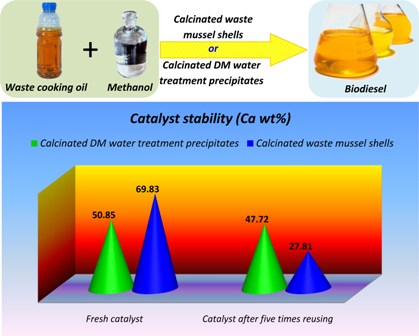Kinetic comparison of two basic heterogenous catalysts obtained from sustainable resources for transesterification of waste cooking oil