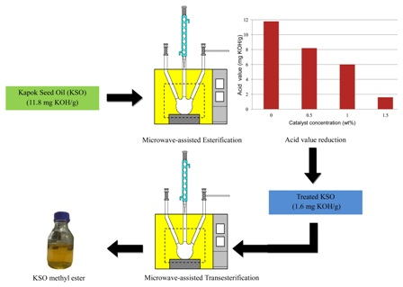 Microwave-assisted methyl esters synthesis of Kapok (Ceiba pentandra) seed oil: parametric and optimization study