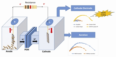 Effect of various carbon-based cathode electrodes on the performance of microbial fuel cell