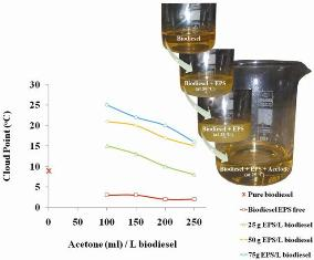 Improvement of the cold flow characteristics of biodiesel containing dissolved polymer wastes using acetone