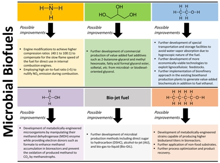 A review on green liquid fuels for the transportation sector: a prospect of microbial solutions to climate change