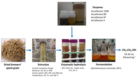 Effect of extrusion conditions and hydrolysis with fiber-degrading enzymes on the production of C5 and C6 sugars from brewers' spent grain for bioethanol production