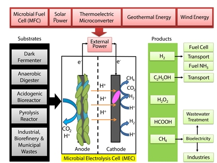 Biorefinery perspectives of microbial electrolysis cells (MECs) for hydrogen and valuable chemicals production through wastewater treatment