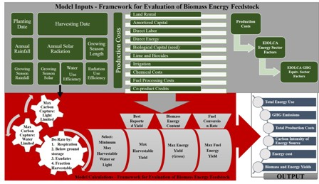 First-order estimates of the costs, input-output energy analysis, and energy returns on investment of conventional and emerging biofuels feedstocks